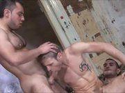 Porno Gay Amador A Três.